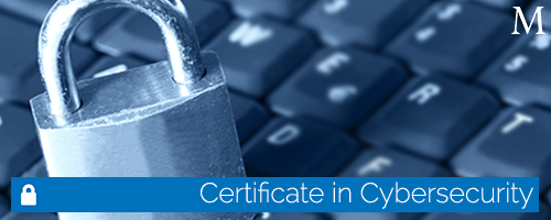 Certificate in Cybersecurity Suite